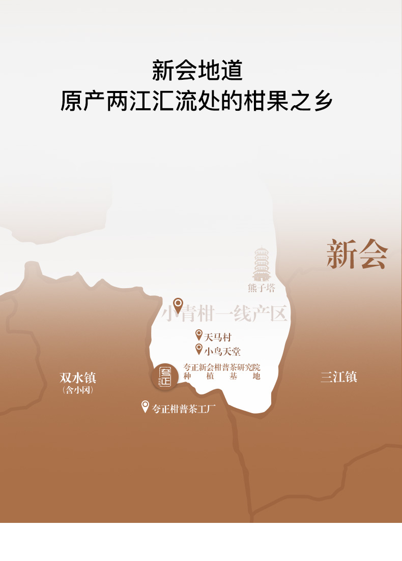 小青柑(普金豆)_09.jpg