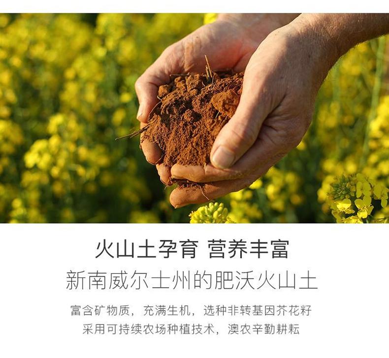 芥花籽油6.png