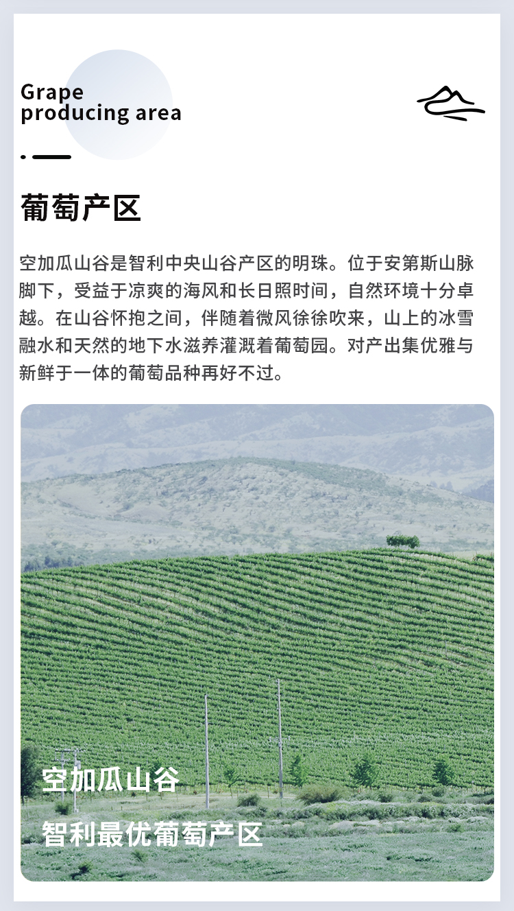 入门梅洛(三个小人)详情页_05.jpg